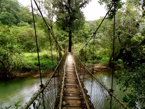 Coorg Weekend Tour