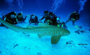 Lakshadweep Adventure Tour