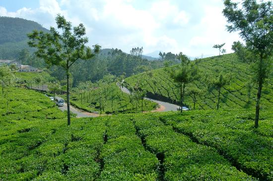Munnar Holiday Tour