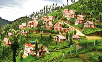 Ooty Sightseeing Tour