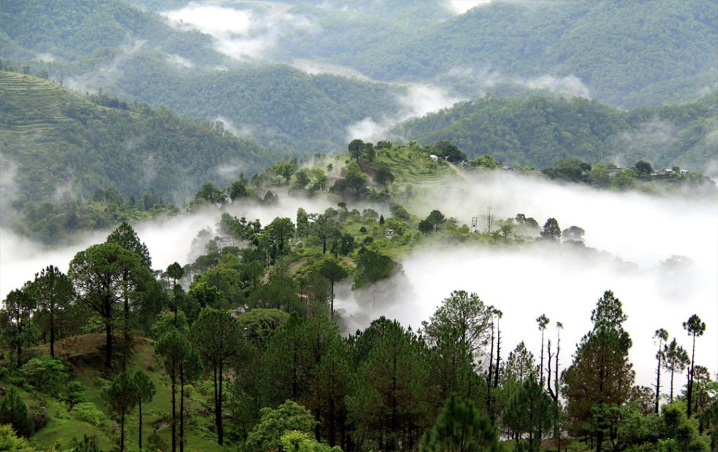 Tour Package For Mussoorie