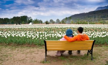 Srinagar Honeymoon Tour Package