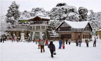 Shimla Car Tours