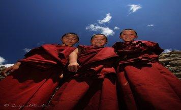 Tibet Experience In Ladakh