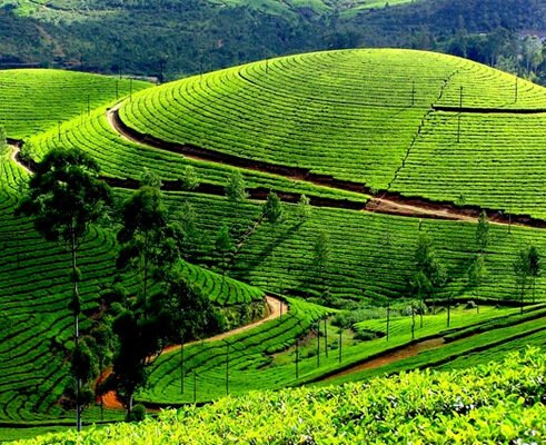 Kerala Weekend Tour