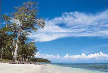 Andaman Tour Package From Cochin