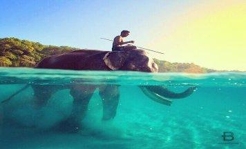 Wonderful Andaman