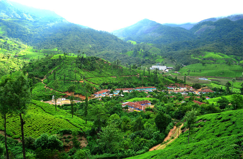 Munnar Weekend Tour