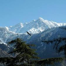 Dharamsala Weekend Tour