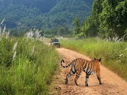 Pachmarhi Sightseeing Tour Packages