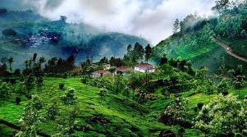 Coorg Tour Package From Mangalore