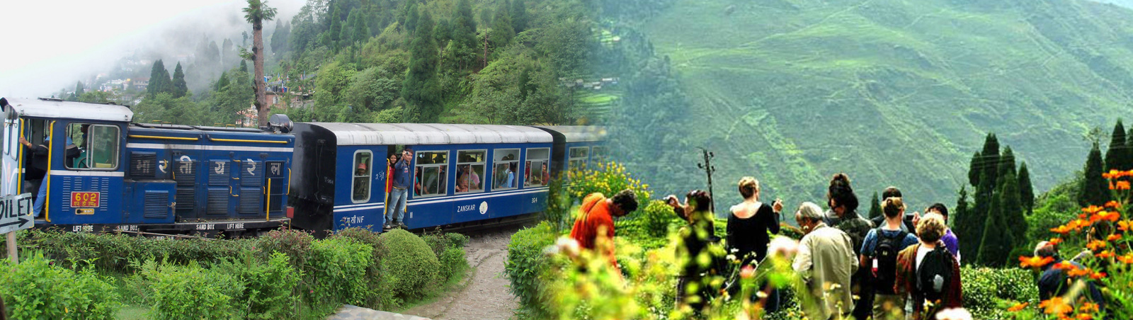 Visiting Best Places And Culture Of Darjeeling